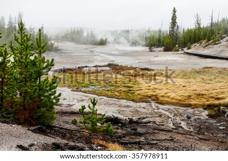 Norris Geyser Basin - Yellowstone National Park - Wyoming - USA - stock photo