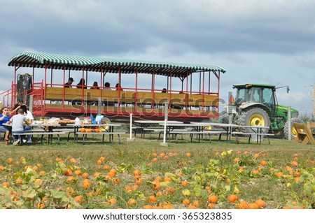 NORTH ABINGTON, PA - SEP 26: Roba Family Farms in North Abington Township in Pennsylvania, as seen on Sep 26, 2015. The Harvest Festival begins in September and ends as the moon rises on Halloween. - stock photo