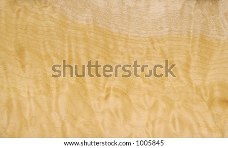 North American Curly Willow Wood Background - stock photo