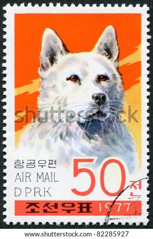 NORTH KOREA - CIRCA 1977: A stamp printed in North Korea, shows a dog breed Keeshond, circa 1977 - stock photo