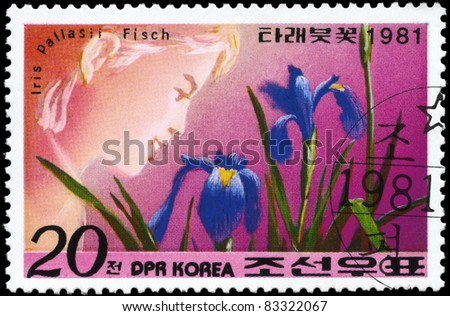"NORTH KOREA - CIRCA 1981: A Stamp printed in NORTH KOREA shows image of a Iris Pallasii Fisch, from the series ""Designs"", circa 1981"