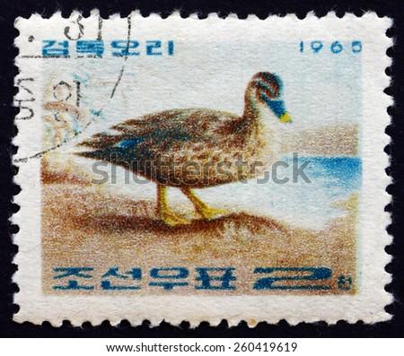 NORTH KOREA - CIRCA 1965: a stamp printed in North Korea shows Spot-billed Duck, Anas Poecilorhyncha, Korean Duck, Bird, circa 1965 - stock photo