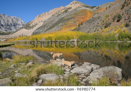North Sabrina Lake in the California Sierra Nevada mountains with autumn color - stock photo