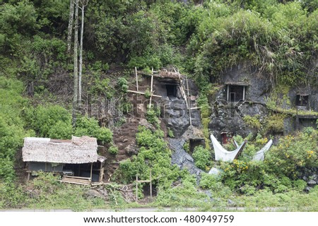 North Toraja, Sulawesi, Indonesia-Aug 26, 2016:Stone Graveyard or burial site with coffins placed in caves carved into the rock with wooden statues, images of the dead persons.