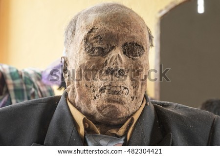 corpse stock images royaltyfree images  vectors