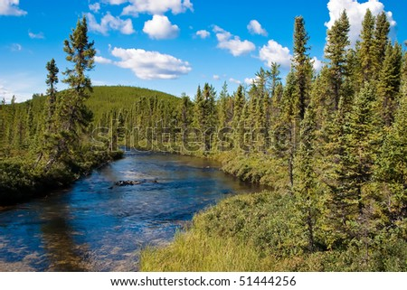 Northern Canadian river and natural forest. - stock photo
