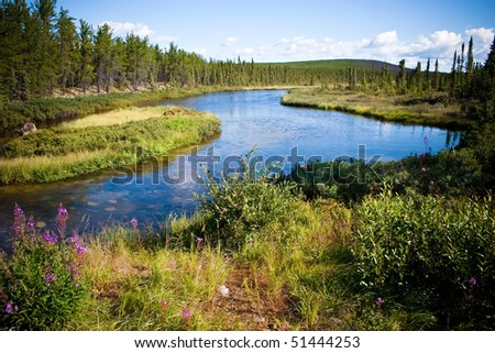 Northern Canadian river and natural forest. Clean and untouched by man. - stock photo