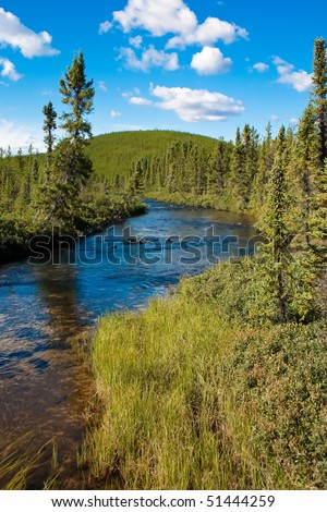 Northern Canadian river and natural forest. Clean, peaceful and untouched by man. - stock photo