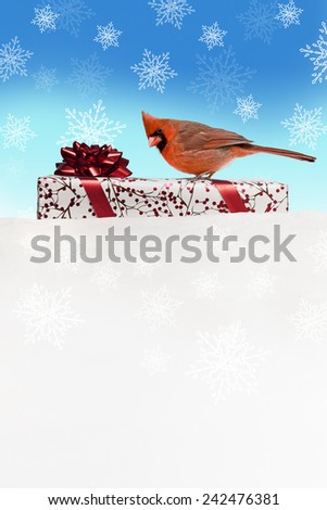 Northern Cardinal on Gift Package with Stylized Snow Background - stock photo