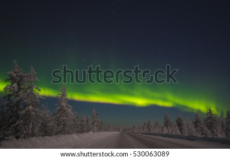 Northern Lights - Aurora borealis over snow-covered road
