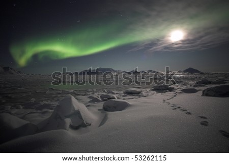 Northern Lights, winter scenery landscape - stock photo