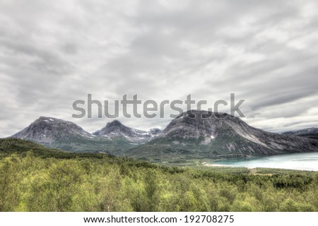 Northern  Norway landscape with fjord, mountains and forest - stock photo