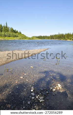 Northern taiga river on a Sunny day. The river of the Polar Urals In the Republic of Komi, Russia. - stock photo