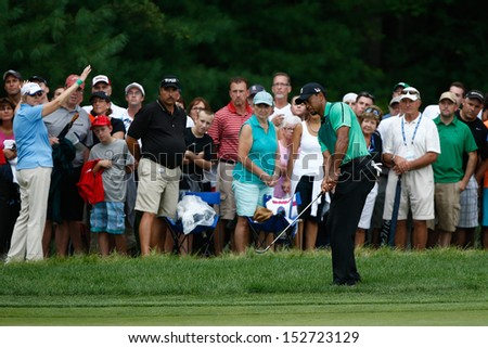 NORTON, MA-SEP 1: Tiger Woods hits out of the rough during the third round at the Deutsche Bank Championship at TPC Boston on September 1, 2013 in Norton, Massachusetts.  - stock photo