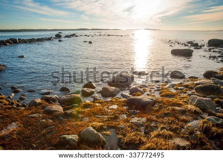 Norwegian fjord in winter in sunny day - stock photo