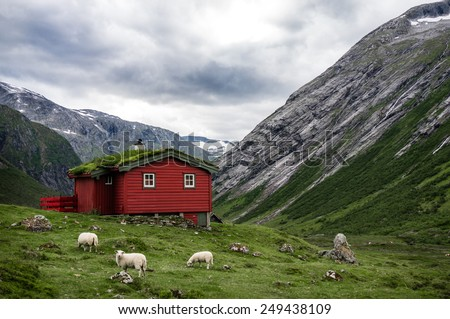 Norwegian typical grass roof wooden house in scandinavian panorama - stock photo