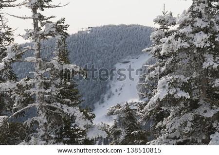 Nose Dive ski trail, Stowe, Vermont, USA - stock photo