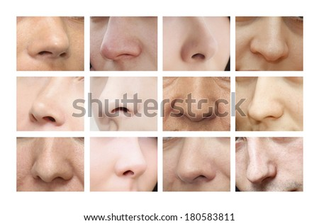 Noses. Various forms of the nose - stock photo
