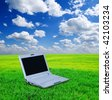 notebook on a green grass - stock photo