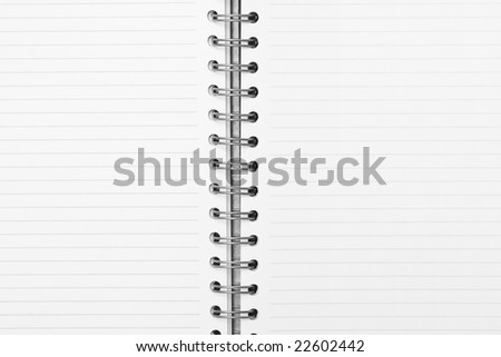 notebook with striped paper, binder and empty page