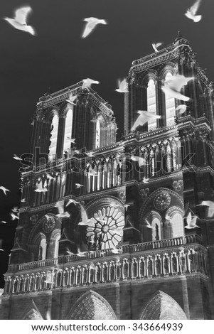Notre Dame cathedral at sunset and flying (blurred) black birds in the sky (Paris, France). Soul metaphor. Aged photo. Black and white. Inverted colors effect. - stock photo