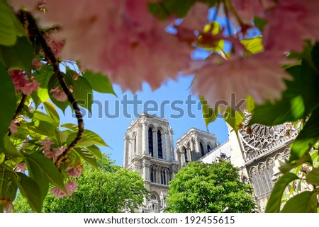 Notre Dame cathedral in spring time, Paris, France - stock photo