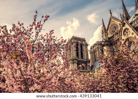 Notre Dame de Paris. France. Ancient catholic cathedral on the quay of a river Seine. Famous touristic architecture landmark in spring. Toned image