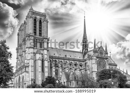 Notre Dame in Paris. - stock photo