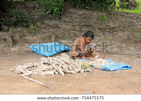 November 8, 2017 Thai old woman is sitting down chopped cassava roots for drying to be sold to cassava starch factory in Uthai Thani province, Thailand.