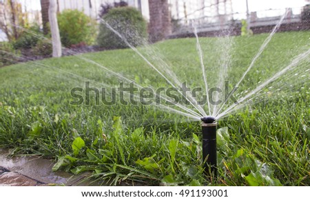 nozzle automatic watering system against a background of green grass close-up