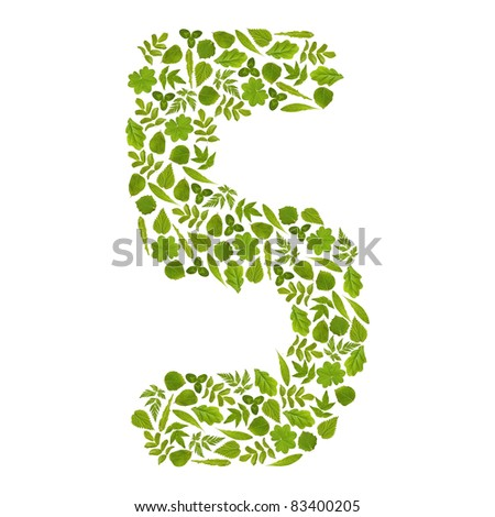 Number FIVE from green leafs - stock photo