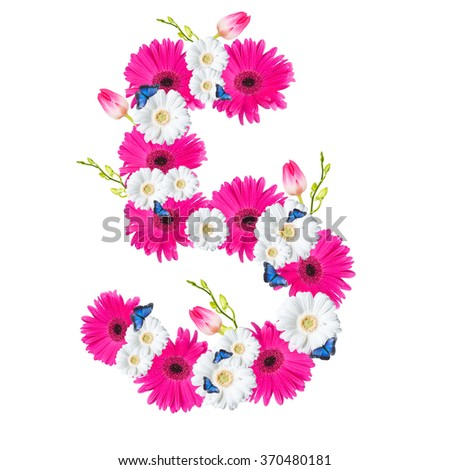 Number 5, flower isolated on white background. Gerber, tulips and butterfly  - stock photo