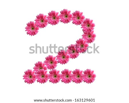 Number 2 from pink gerbera flowers alphabet isolated on white background - stock photo