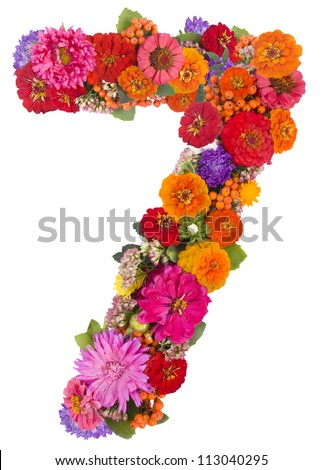 number 7 made from flowers - stock photo