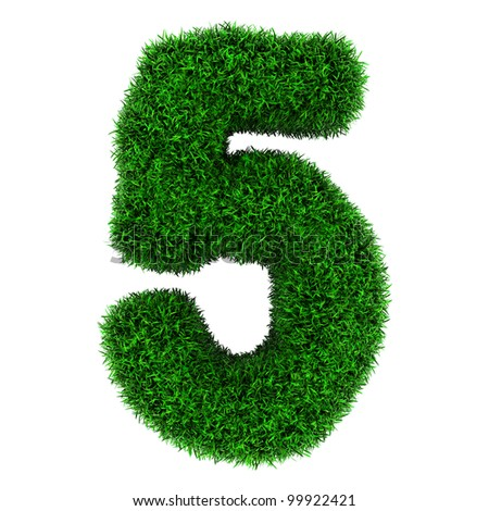 Number 5, made of grass isolated on white background.