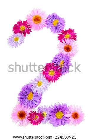Number 2, multicolored aster flowers alphabet isolated on white background - stock photo
