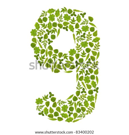 Number NINE from green leafs - stock photo