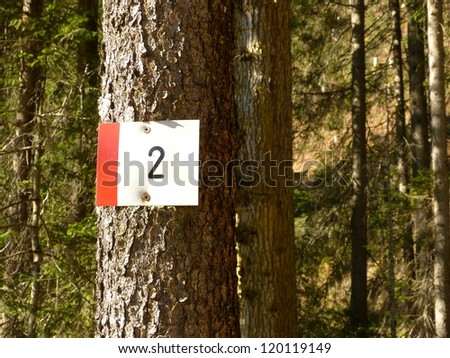 Number 2 (two) on the tree as a sign - stock photo