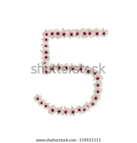 Numbers made of flowers - stock photo