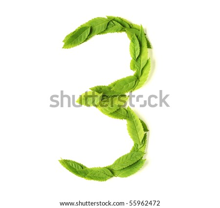 Numbers made of leaves - stock photo
