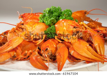 Numerous of boiled lobsters on the plate - stock photo