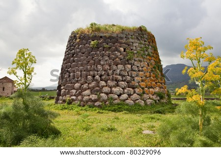 Nuraghe tower ruins and giant flower Sardinia Sardegna Italy archeological remnants of prehistoric building of bronze age ancient civilization tourism