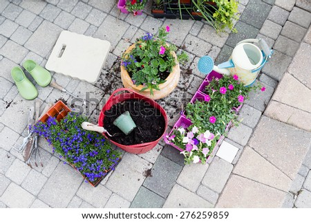 Nursery seedlings, potting soil and flowerpots with newly planted flowers standing on a brick patio with trays of plants waiting to be transplanted in a gardening and home enhancement concept - stock photo