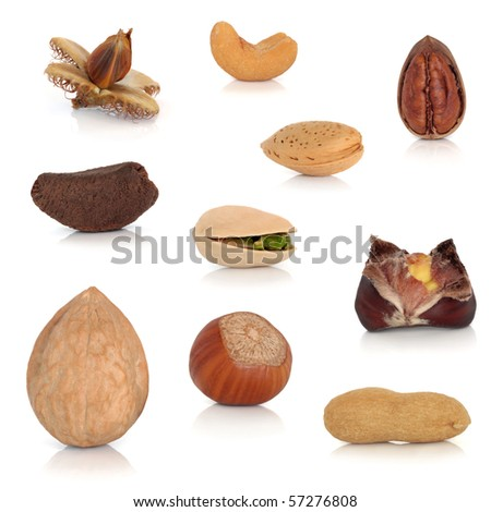Nut collection  isolated over white background with reflection. - stock photo