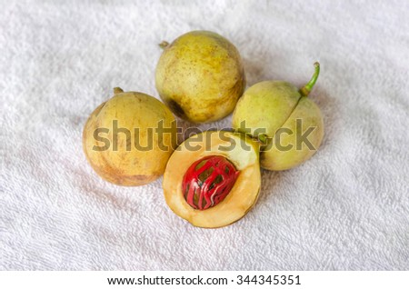 Nutmeg (Myristica fragrans Houtt.), Thailand herbs with medicinal properties - stock photo