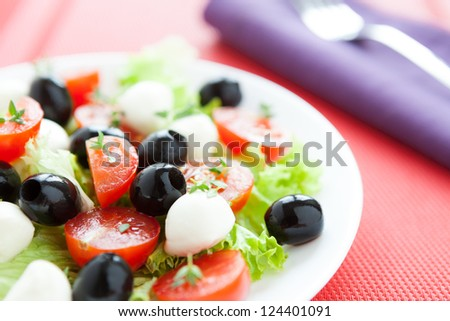 Nutritious salad with fresh tomatoes and mozzarella, close up