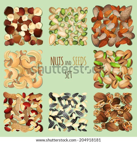 Nuts and seeds mix decorative elements set  illustration
