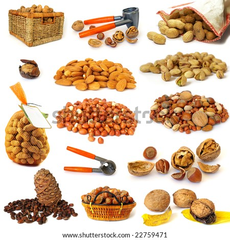 Nuts collection isolated on a white background
