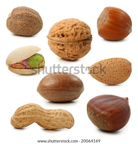 Nuts collection isolated on white background - stock photo