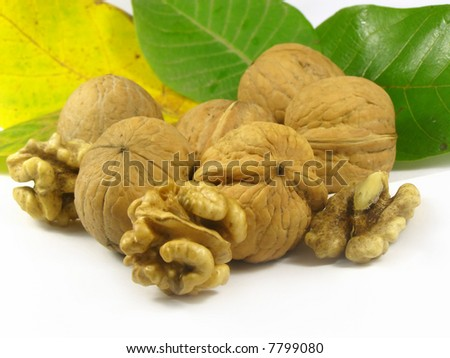 nuts fruits macro photo walnuts harvest with leafs - stock photo